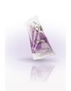 Shampoo Brombeere Pyramiden-Sachet 15ml